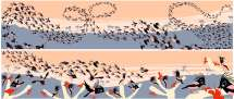 Bird Business: Illustrated Peeks into the Daily Lives of Indian Birds - 1